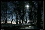 1Mondnacht